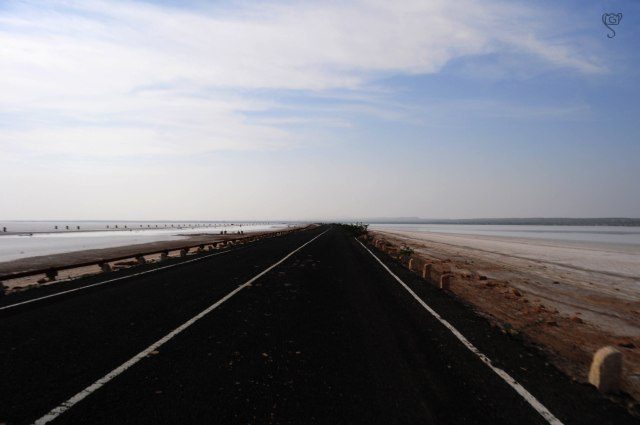 Road through the White Rann