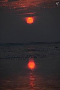 Sunset at the Salty Marsh of White Rann