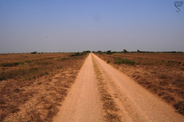 Dirt Road through the Bustard Sanctuary