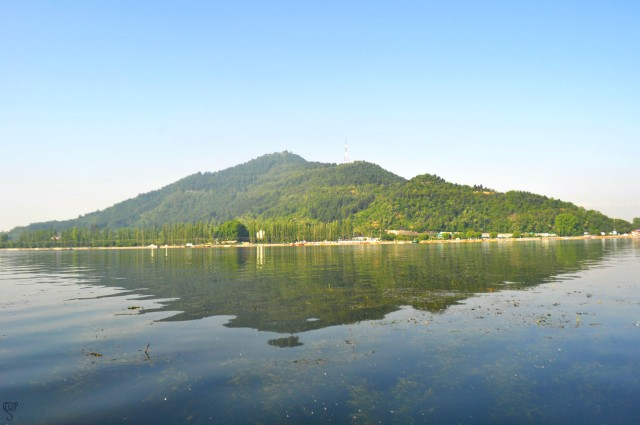 Dal Lake with the Reflection of the Hari Parbat
