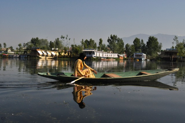 A Lass on her Way in Dal Lake