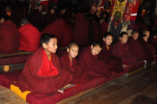 Young monks waiting to start the daily prayer