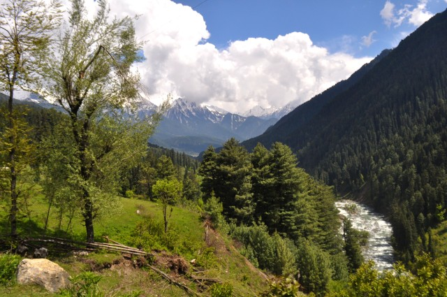 Lider River in Pahalgam