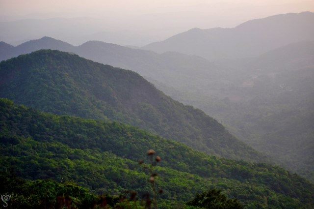 The Swapnagandha Valley