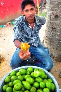 'Amra' fruit or flower?
