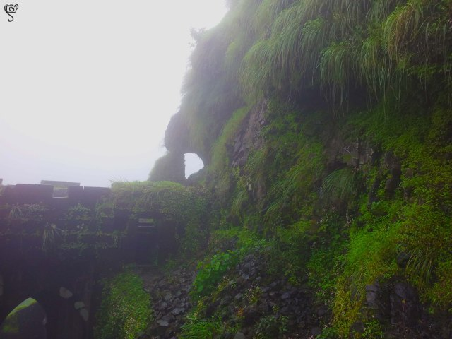 Moss and vegetation covered fort walls