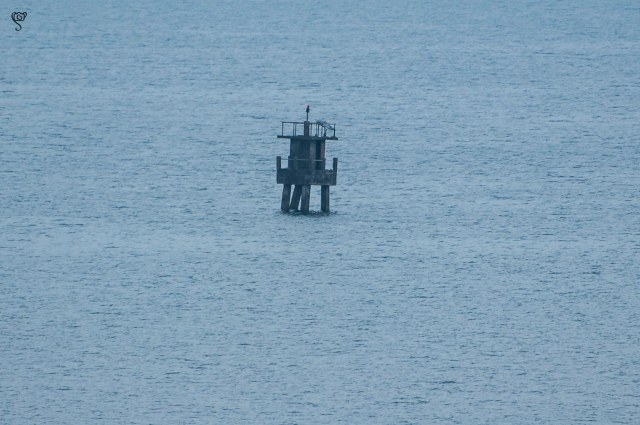 The small signal point in the waters