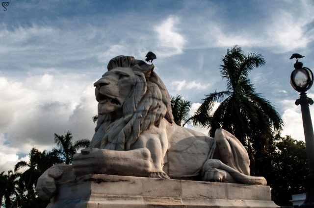 The Lion guards the queen at Victoria Memorial entrance