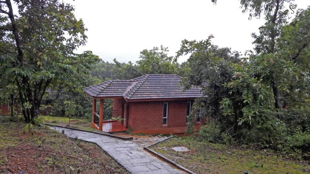 The cottages spaced within the forest