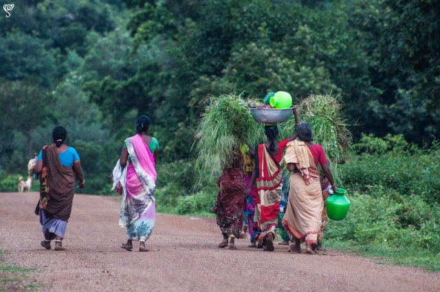Village ladies with fodder for their cattle and vessels to fetch water
