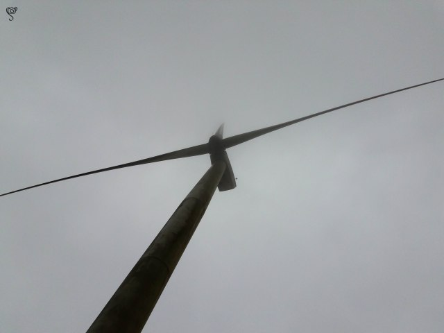 A huge windmill stands above us