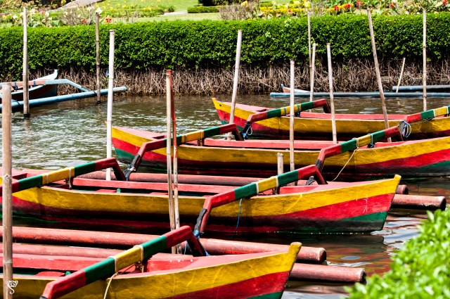 Brightly coloured boats anchored by the bank of Lake Bratan