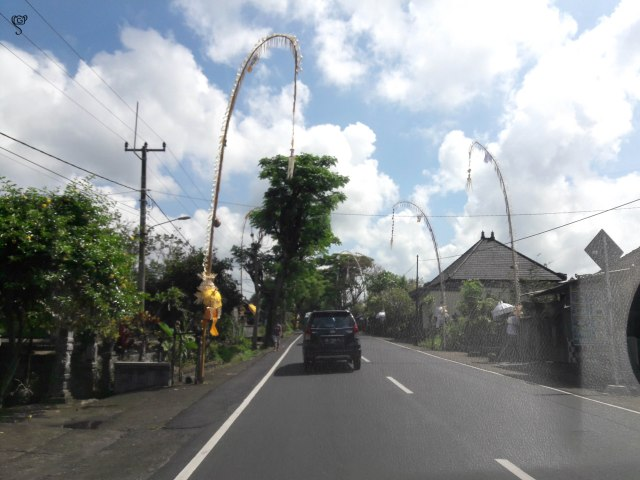 The long poles on either side of the road