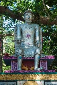 The Silver statue of Emperor Ashoka under the ancient Banyan tree