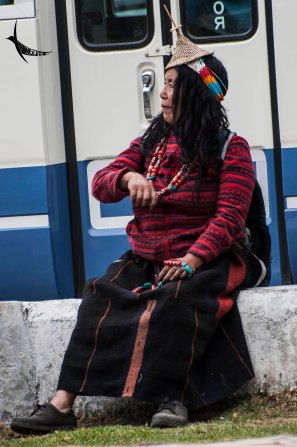 A nomad lady with her traditional headgear