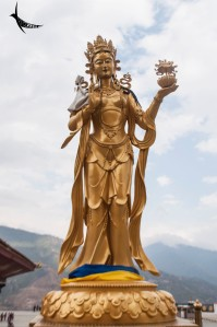 Apsara with offering in the Buddha viewpoint