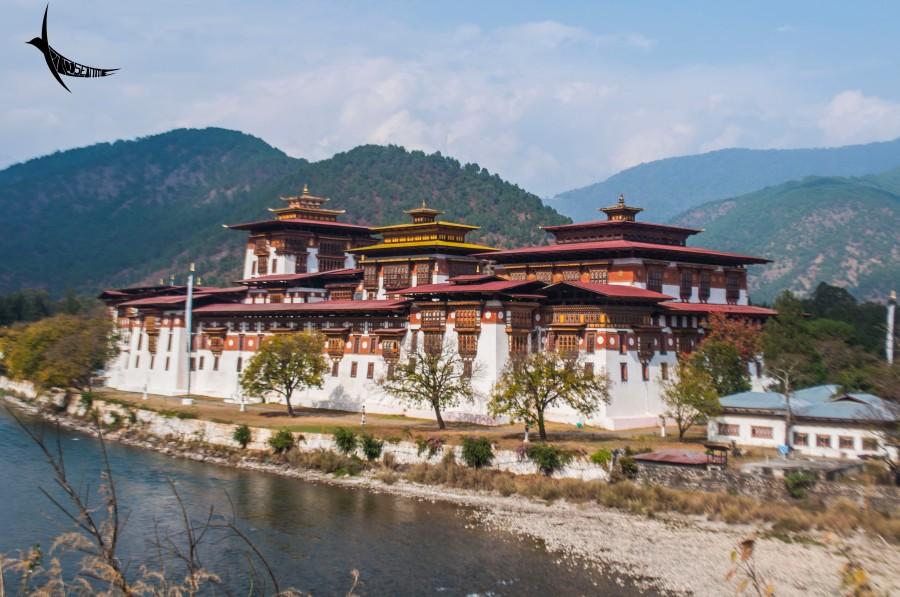 The magnificent Punakha Dzong