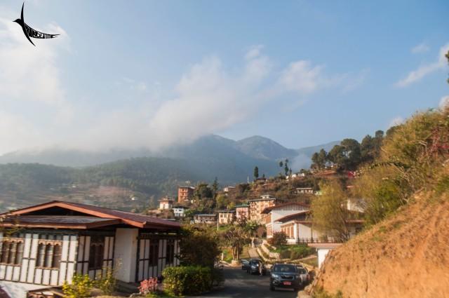 The beautiful Drubchhu resort