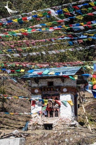 The bright prayer flags
