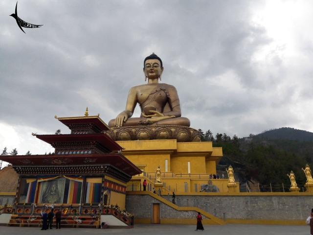 The Buddha Viewpoint