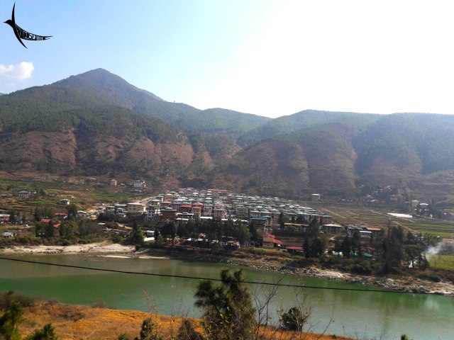 The series of houses in Wangdue Phodrang