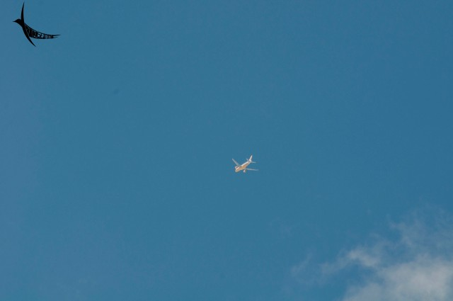 On every trip, I did spot the National carrier in the sky