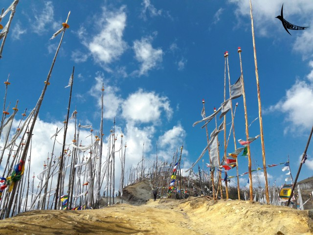 Prayer flags in Chele La Pass