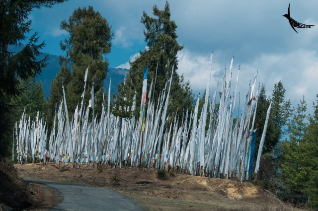Prayer flags on the way to Chele La Pass