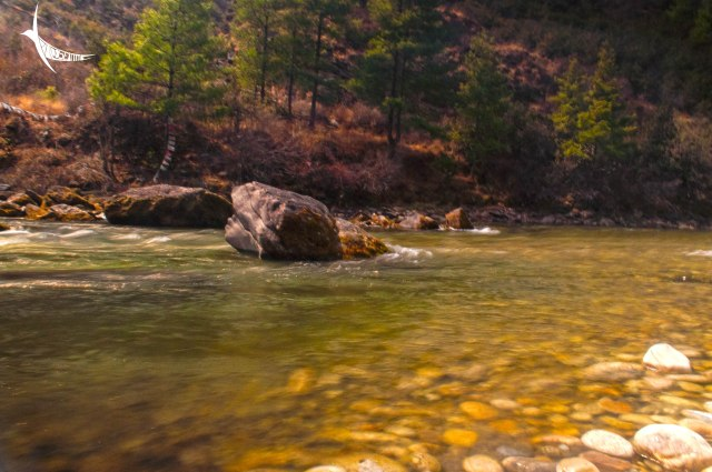 The pristine waters of Paro Chu