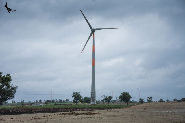 Wind Turbines stand tall on the way