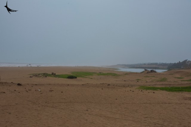 Puri Mohana - River Dhaudia meets the sea