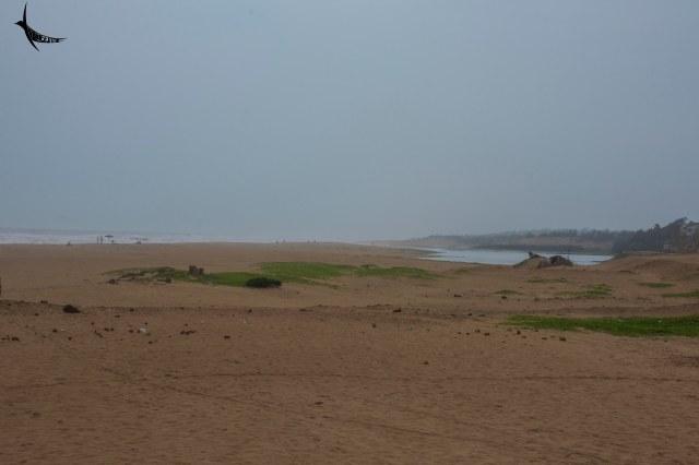 Puri Mohana - River Dhaudia meets the sea