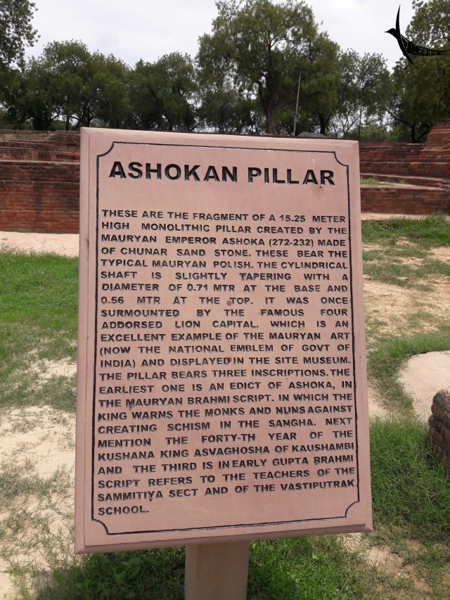 Information about the Ashokan Pillar