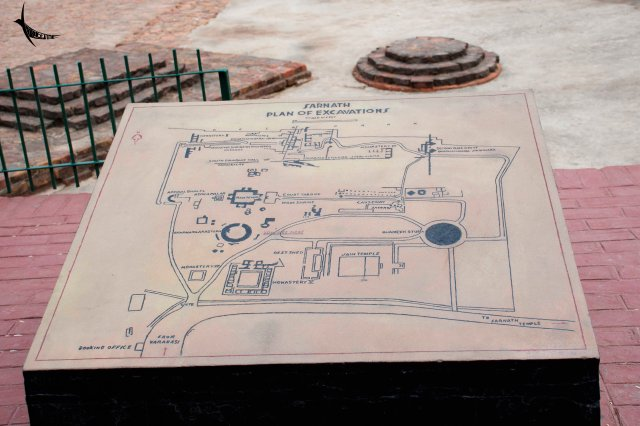 The excavation map