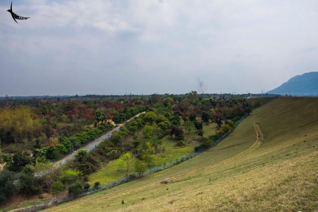 The surroundings of Panchet Dam