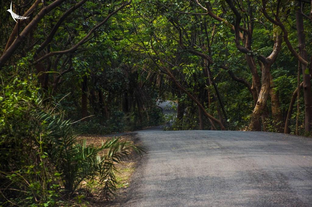 Road to Garpanchakot