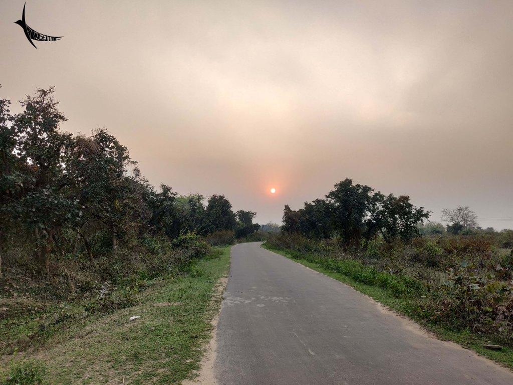 Road to Palashbari