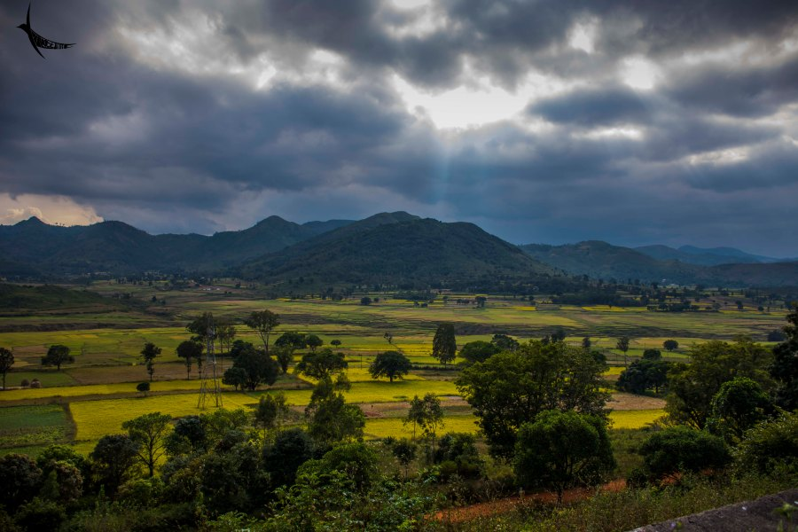 The colourful Araku Valley