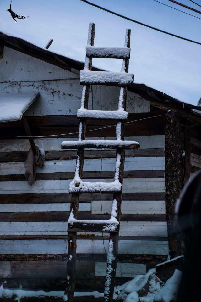 The ladder also got its share of snow