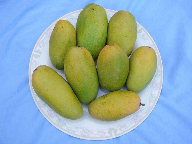 Dusseri Mango PC: Wikipedia