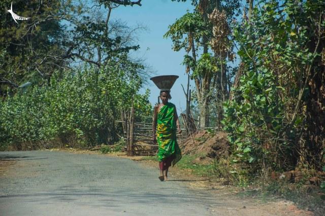 A hardworking tribal lady