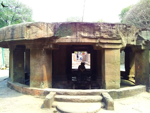 The Nandi mandapa in the Pataleshwar temple