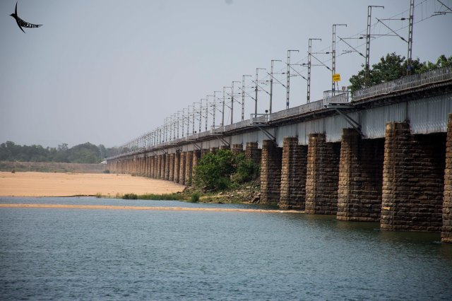 Mahanadi river in Odisha