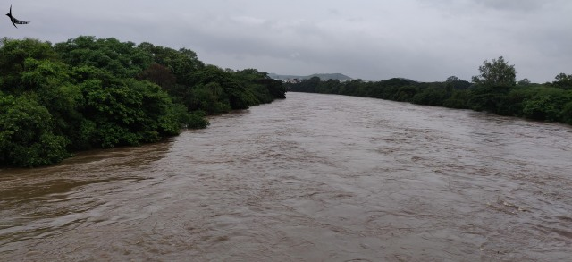 The swelling Mula River in Pune