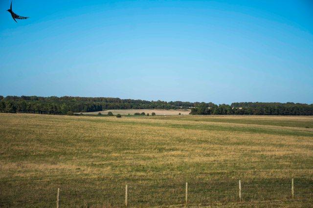The open grassland surrounding Stonehenge