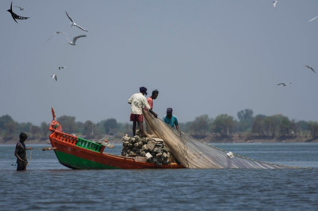 Fishermen at work